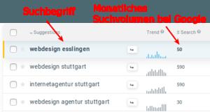 Webdesign Esslingen - Vergleich der Suchvolumina verschiedener Suchworte
